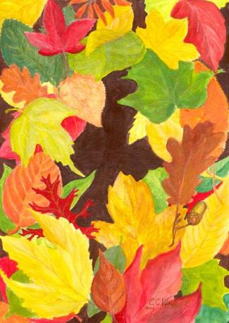 Claudia.Vinck.Autumn